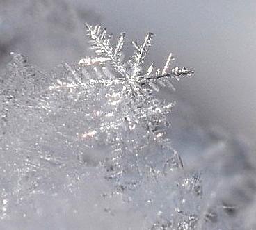 10-3雪結晶.jpg