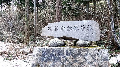 11-2五頭自然休養林.jpg