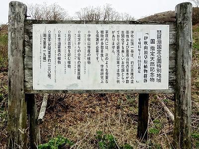 12伊吹山頂草原.jpg