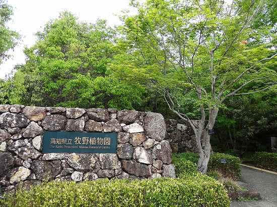 20-1牧野植物園.jpg