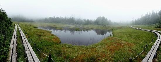 31-20四十八池湿原.jpg