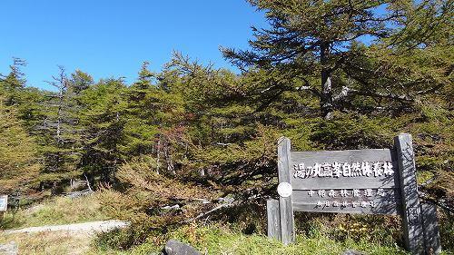 50湯の丸高峰自然休養林.jpg