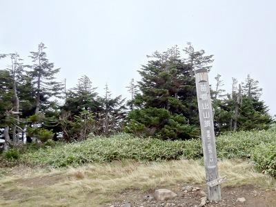 55山頂.jpg