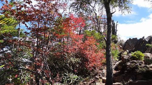 40-2水ノ塔山紅葉.jpg